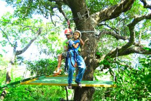 Zip lines and Canopy Tours from Playa Grande