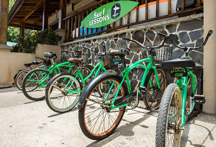 Frijoles Locos Playa Grande Surf Shop Bicycles