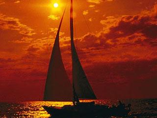 Sailing & Snorkeling Trips
